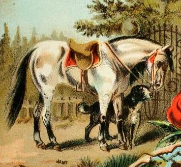 A Horse and a Dog (сказка на английском языке для детей)