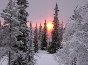 Поет зима аукает. Сергей Есенин на английском.