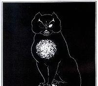 Edgar Poe. The Black Cat (for beginners)